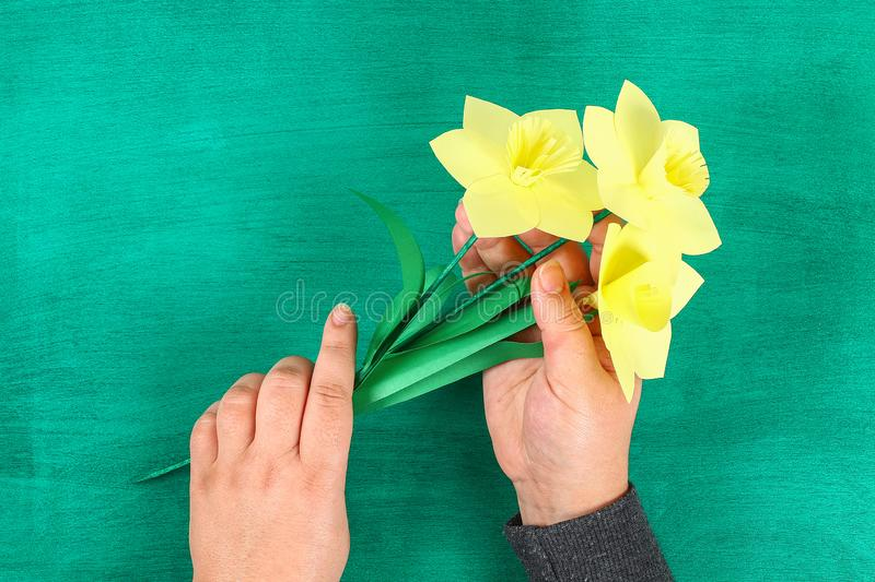 DIY spring flowers daffodils of yellow paper on a green background royalty free stock photo