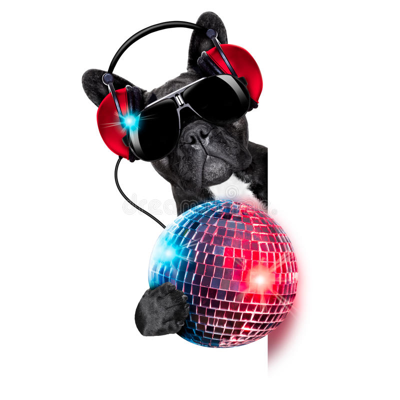 Dj dog. Listening to music behind an empty and blank banner with a fancy disco ball and lights