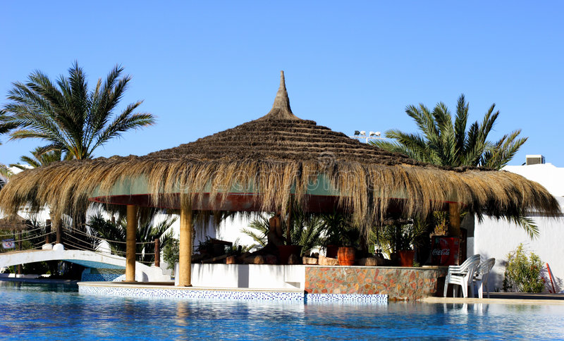 Djerba. Swimming-pool and date in Djerba royalty free stock images