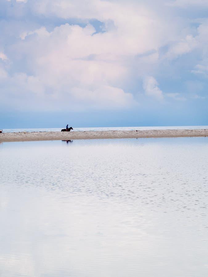 Djerba, Tunisia, rider rides along the beach royalty free stock photography