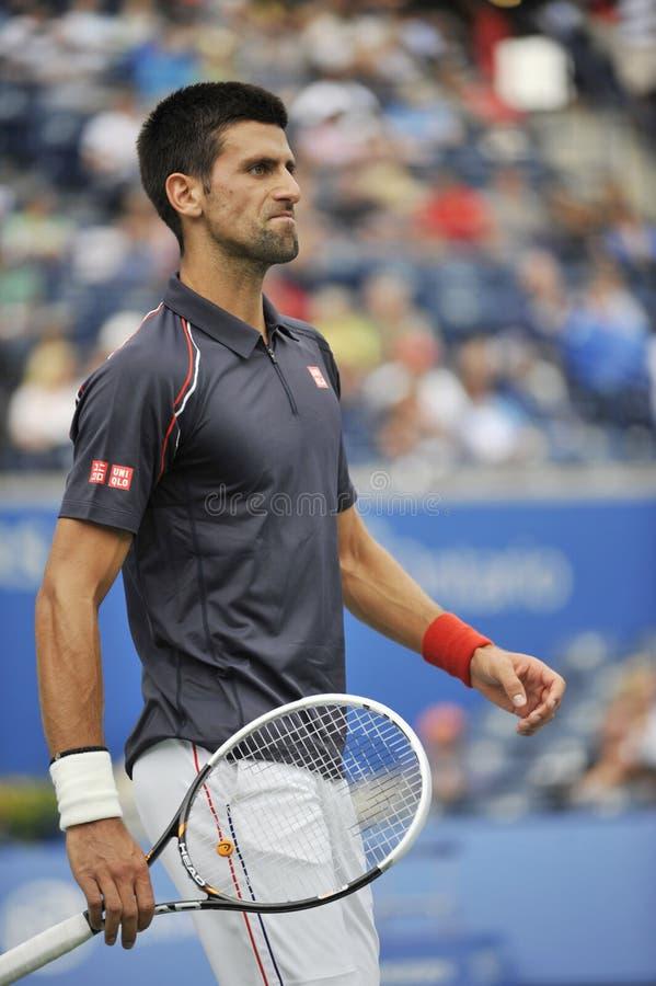 Djokovic Filiżanka Rogers 2012 (140) obraz royalty free