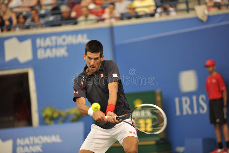 Djokovic Filiżanka Rogers 2012 (3) fotografia stock