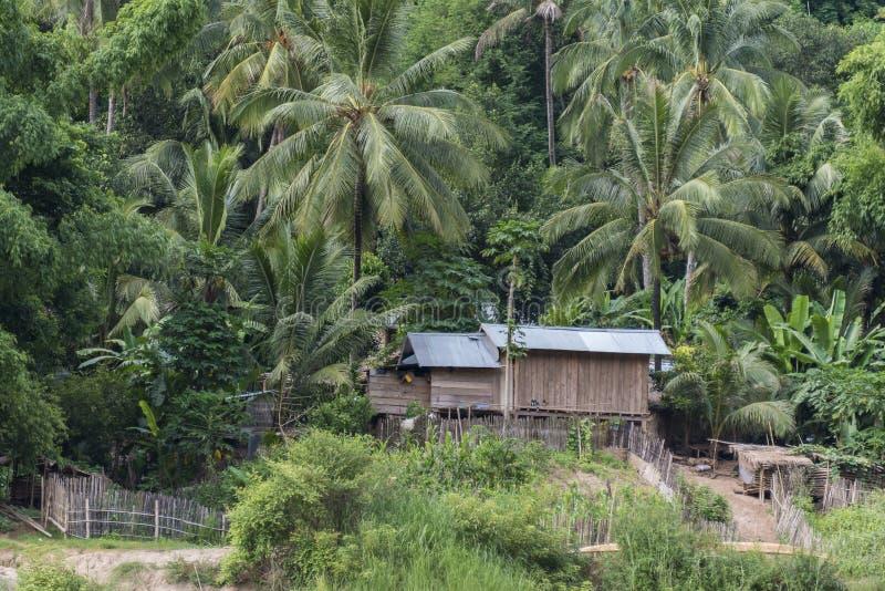 Djungelby på Mekong River, Laos royaltyfria foton