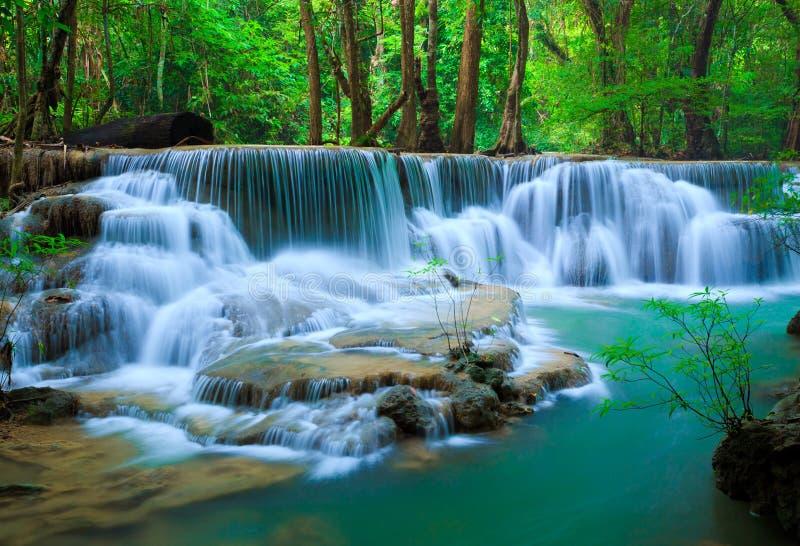 djup skogkanchanaburithailand vattenfall arkivfoton