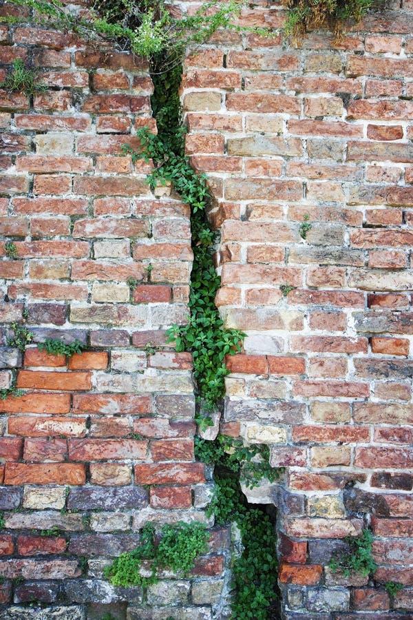 Djup spricka i en gammal skadad tegelstenvägg arkivbilder