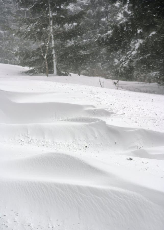 Djupa snödrivor bredvid skogvägen, snöstorm som ses över träd i avstånd arkivfoto