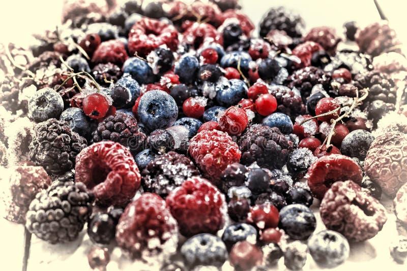 Djupfryst bärcloseup blåbär hallon, vinbär fotografering för bildbyråer