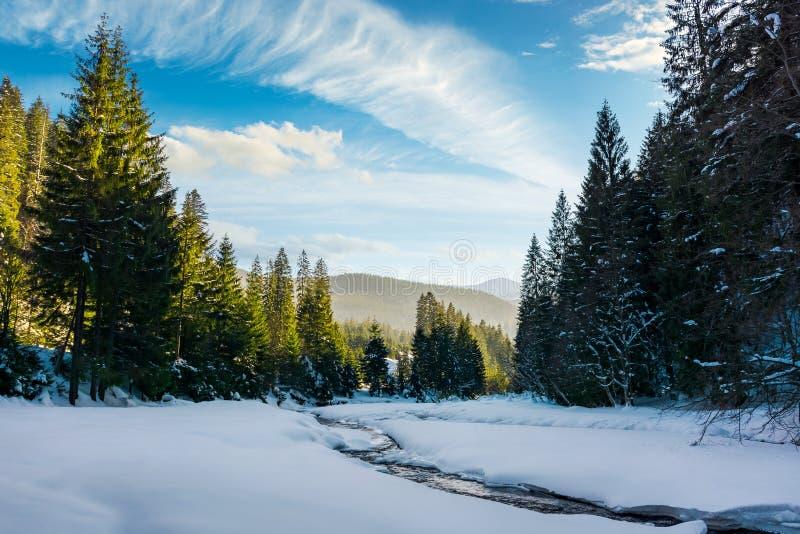 djupfryst bergflod bland skogen i vinter fotografering för bildbyråer