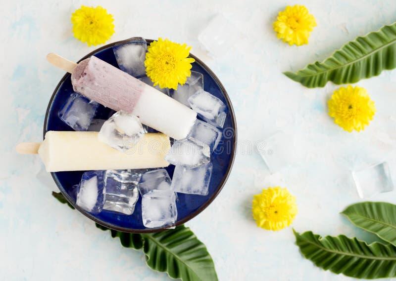 Djupfryst fruktsaft klibbar i is med sidor och blommor royaltyfri fotografi