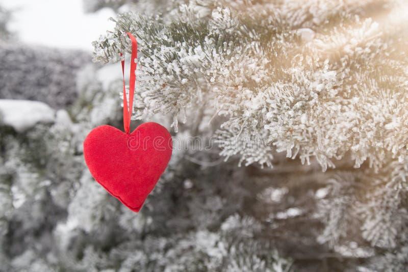 Djupfryst julträd och suddig snö med röd hjärta arkivfoton