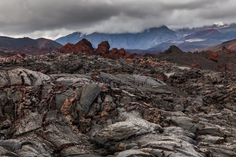 Djupfryst lava av den Tolbachik vulkan, Kamchatka royaltyfria bilder