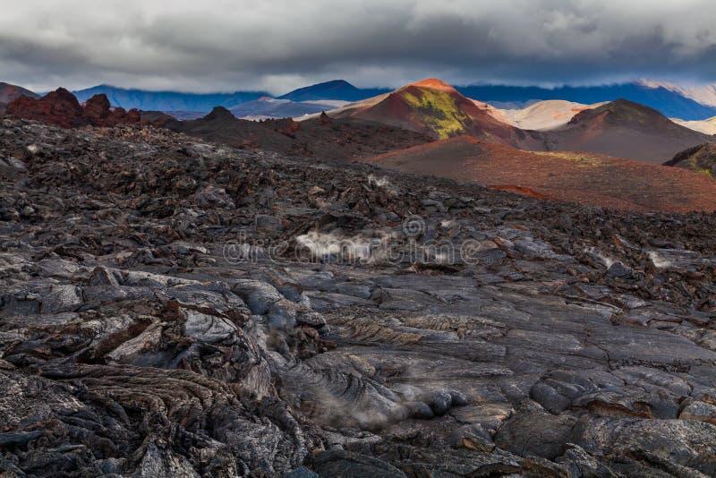 Djupfryst lava av den Tolbachik vulkan, Kamchatka royaltyfri fotografi
