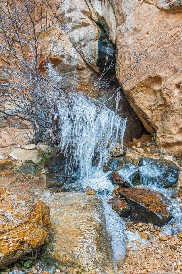 Djupfryst Lost Creek kanjonvattenfall nationell r?d rock f?r omr?deskanjonbeskydd nevada USA arkivbilder