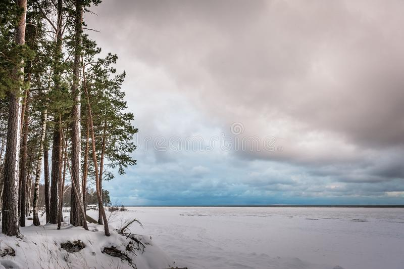 Djupfryst sida för baltiskt hav efter snöstorm royaltyfria bilder