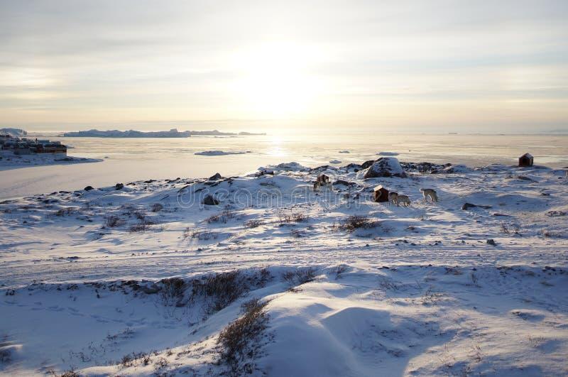 Djupfryst sjö arkivfoton