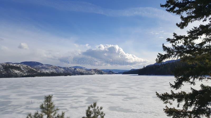 Djupfryst sjö f. Kr. royaltyfri fotografi
