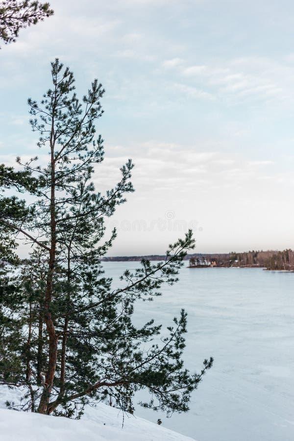 Djupfryst sjö i Finland under våren royaltyfri bild