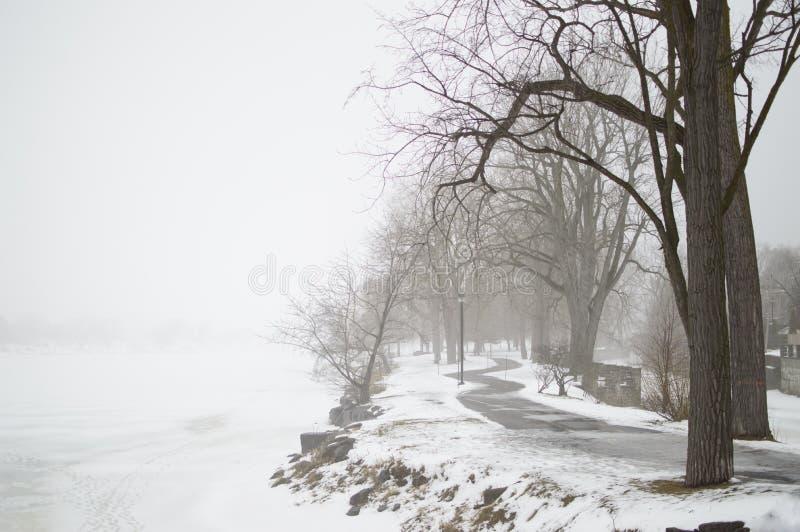 Djupfryst sjö med dimma i vinter royaltyfria bilder