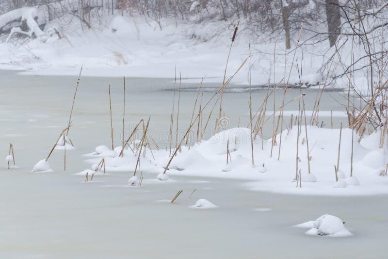 Djupfryst sjö som täckas med is och ny snö royaltyfria foton