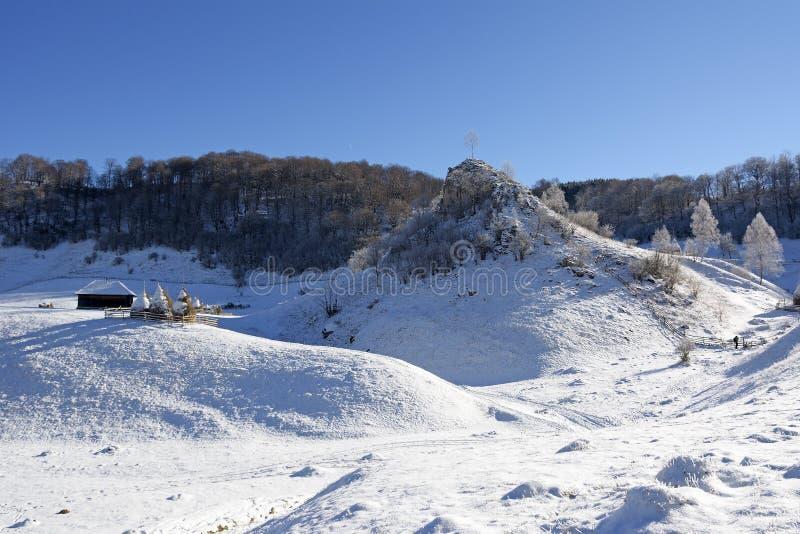 Djupfryst solig dag av en vinter, på lösa transylvania kullar Fundatura Ponorului romania royaltyfria foton