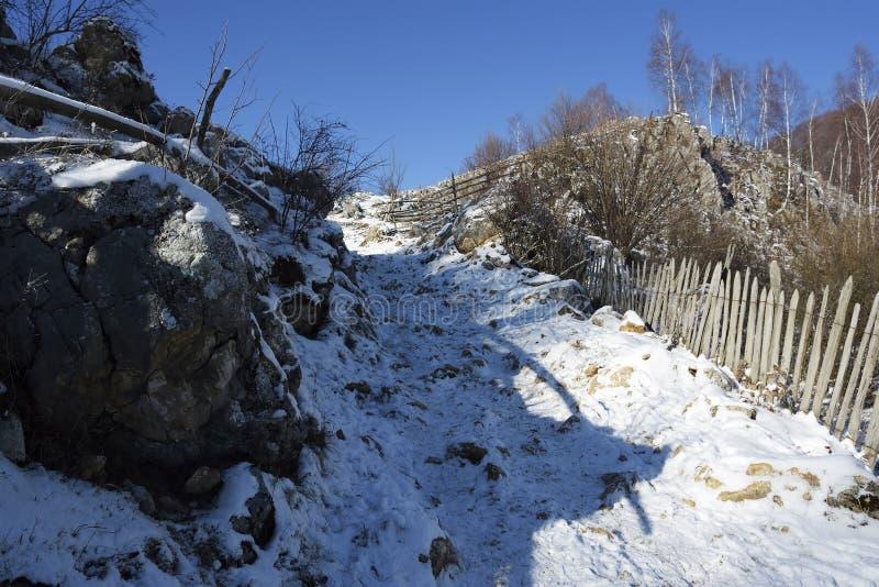 Djupfryst solig dag av en vinter, på lösa transylvania kullar Fundatura Ponorului romania arkivfoton