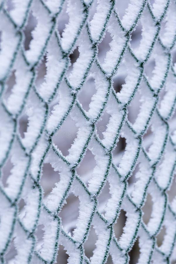 Djupfryst staket på en kall vinterdag royaltyfri fotografi