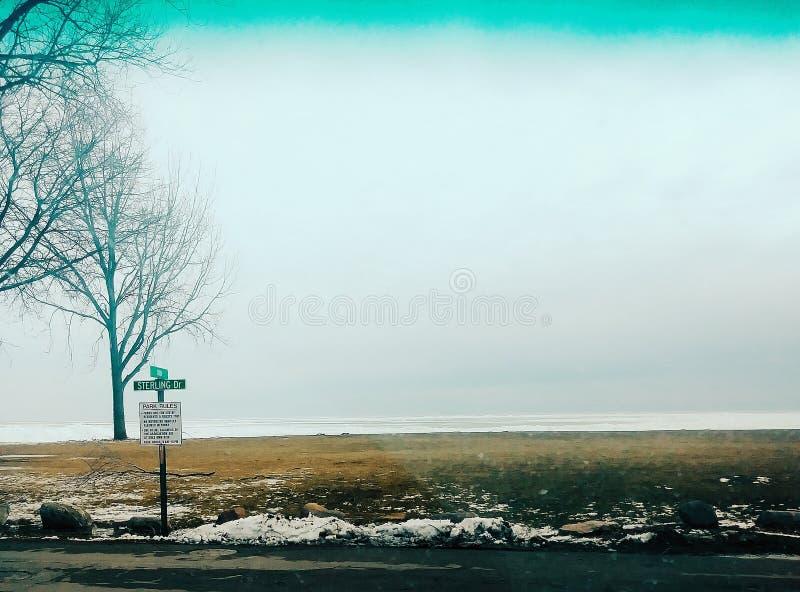 Djupfryst stor sjö royaltyfri bild