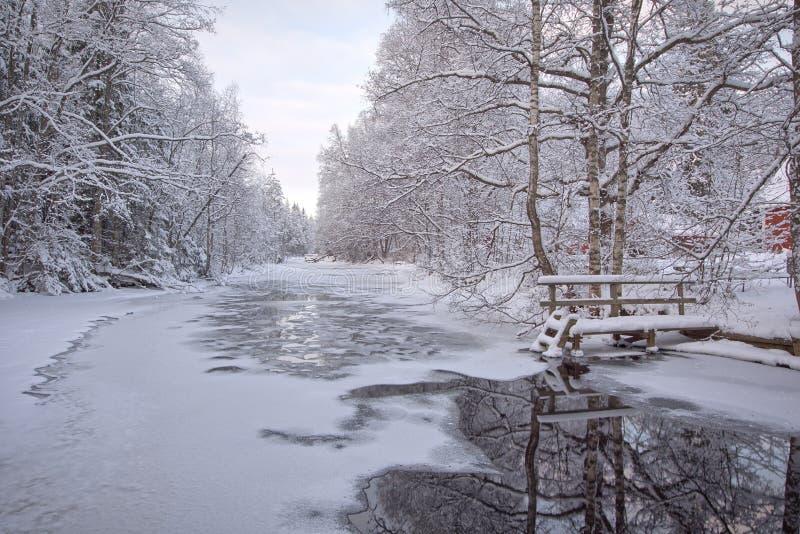 Djupfryst ström i skog royaltyfria foton