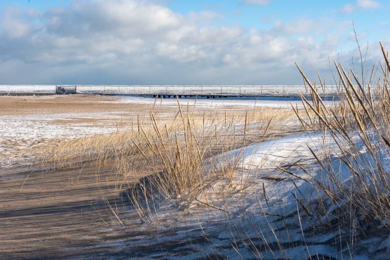 djupfryst strand längs Lake Michigan shoreline i vinter royaltyfria foton