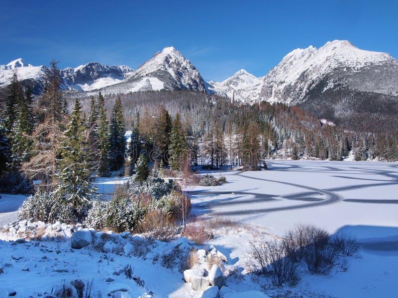 Djupfryst Strbske Pleso i kicken Tatras i vinter royaltyfri foto