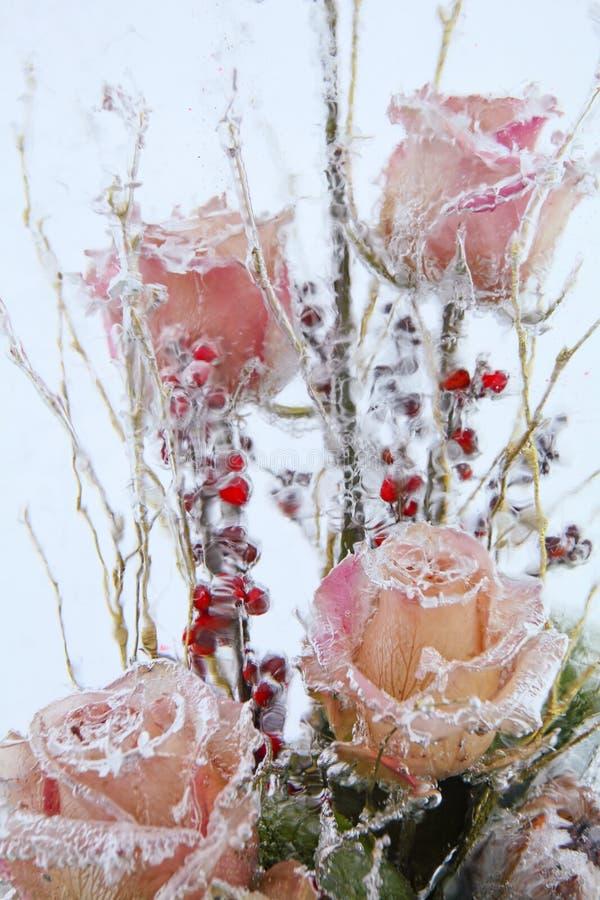 Djupfrysta blommor i kvarter av is arkivfoton