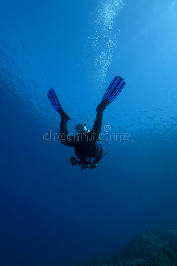 djupt dykningscubavatten arkivbilder