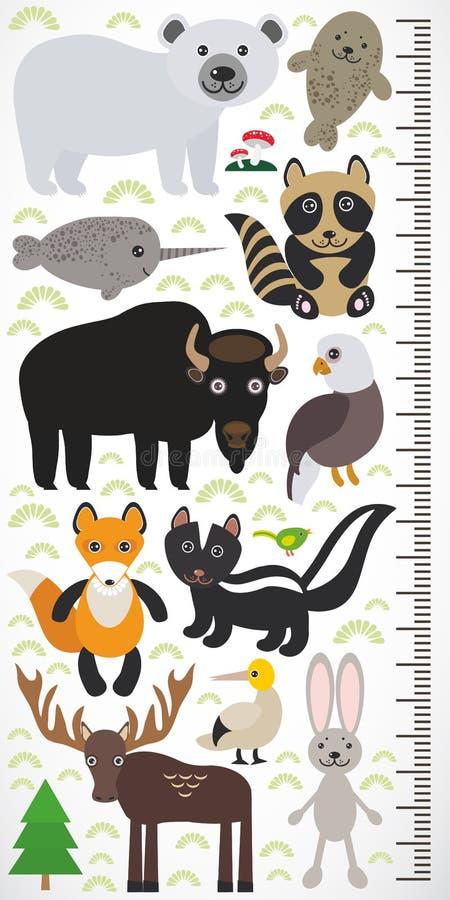 Djur av Nordamerika - hare för havssula för älg för bison för örn för räv för skunk för tvättbjörn för skyddsremsa för narvalisbj vektor illustrationer
