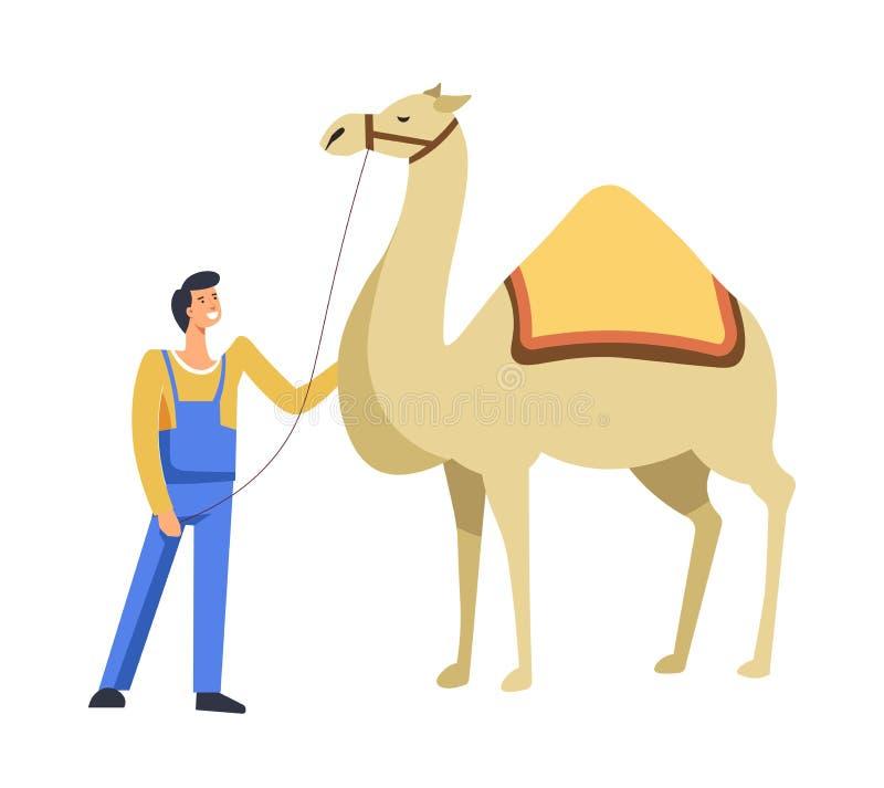 Djur egyptisk kamel med ägaren som att bry sig för den vektorn royaltyfri illustrationer