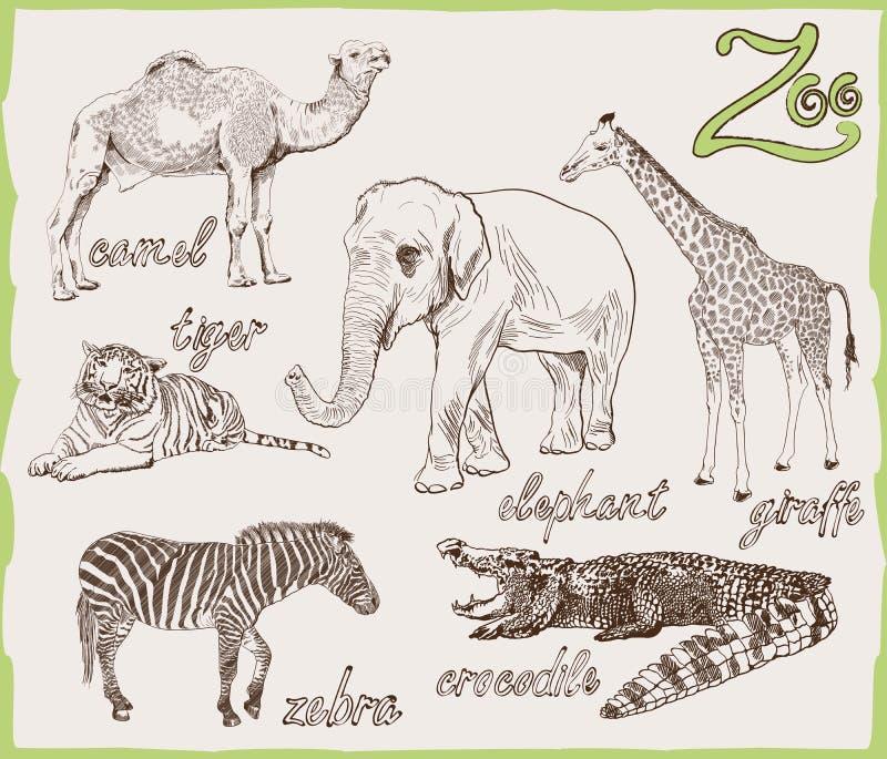 Djur från zoo royaltyfri illustrationer