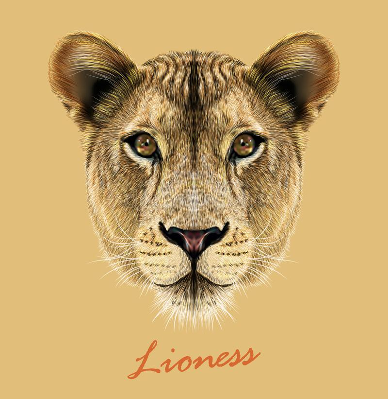 Djur gullig framsida för lejoninna För lejonkatt för vektor afrikansk lös stående för huvud Realistisk pälsstående av lejoninnan  royaltyfri illustrationer