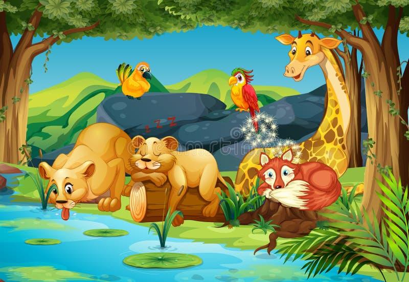 Djur i skogen vektor illustrationer