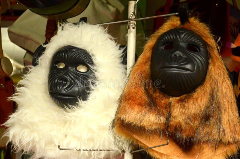 Djur maskering royaltyfri fotografi