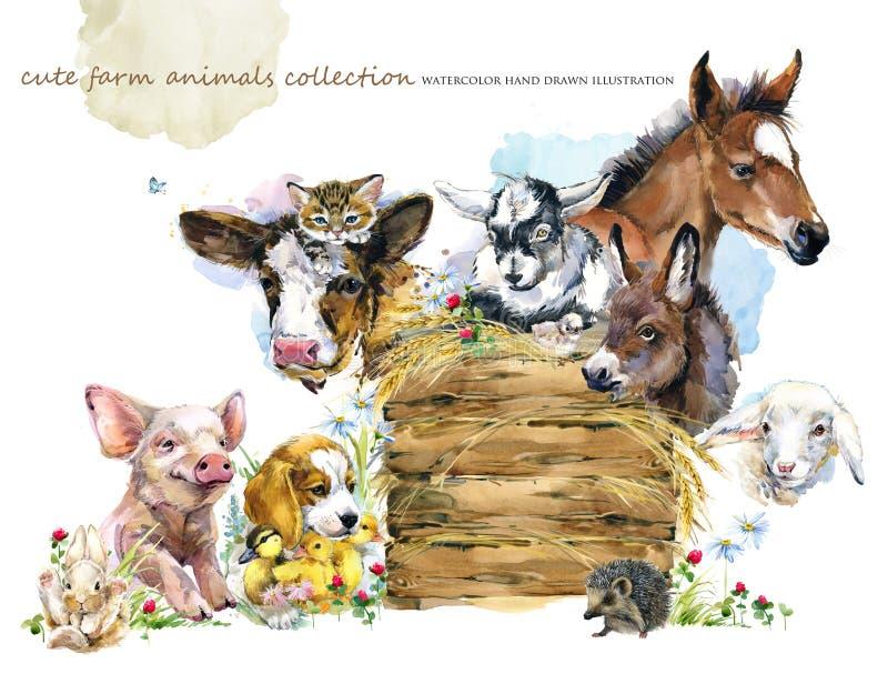 djur samling för vattenfärglantgårdar Utdragen illustration för gullig hand av fölet, piggy som är fegt, hund, ankunge, får, get, stock illustrationer