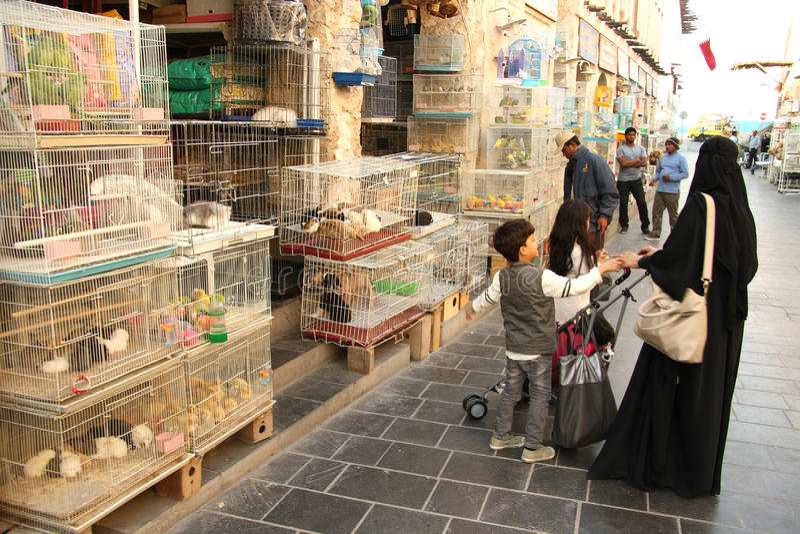 Djur souq i Doha, Qatar royaltyfria bilder