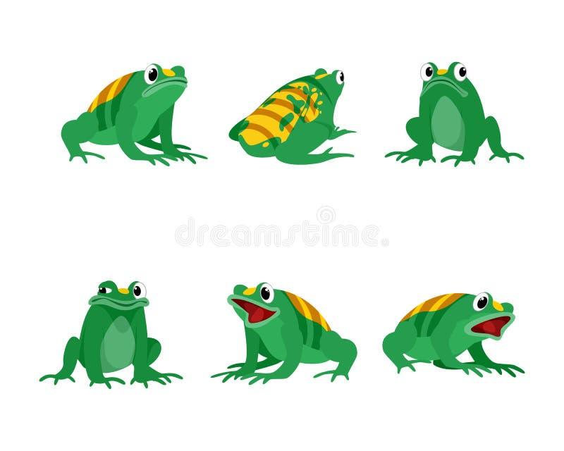 Djura hybrid- grodor och bin stock illustrationer