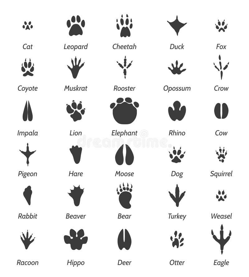 Djura spår och fågelfotspår royaltyfri illustrationer