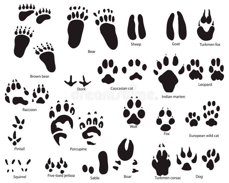 djura titeltrails vektor illustrationer