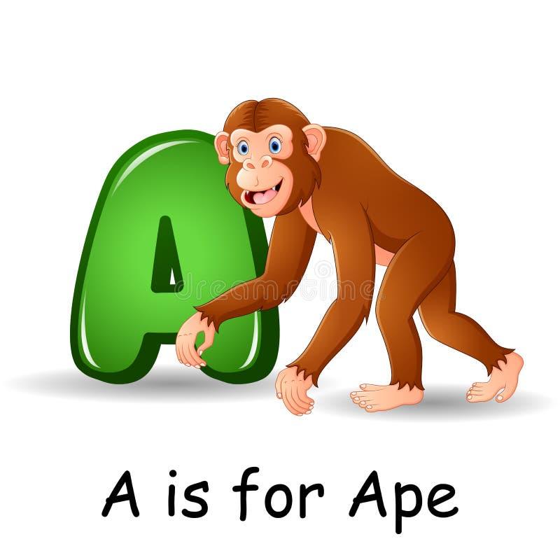 Djuralfabet: A är för apa stock illustrationer