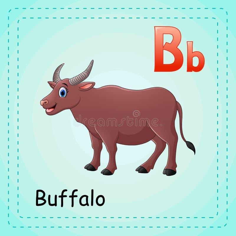 Djuralfabet: B är för buffel royaltyfri illustrationer