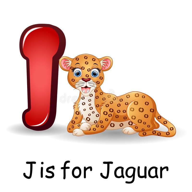 Djuralfabet: J är för Jaguar vektor illustrationer
