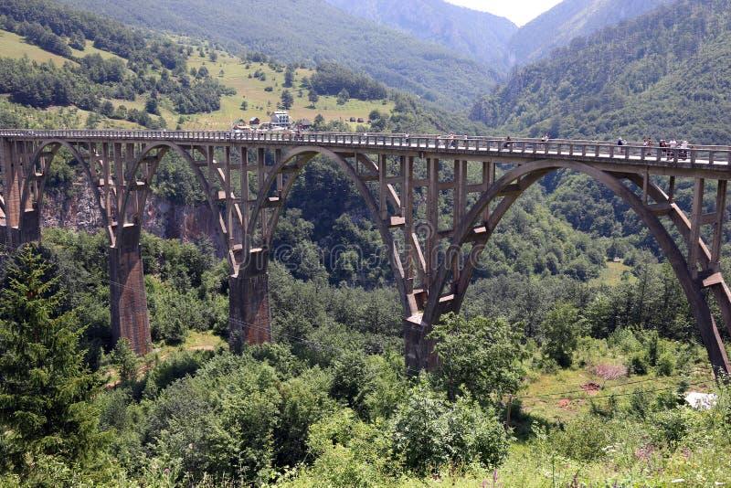 Djurdjevic mostu Tara jaru rzeczny krajobraz obraz royalty free