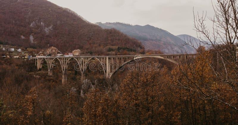 Djurdjevica桥梁看法在河塔拉的在黑山,欧洲 地中海国家美丽的世界  空中全景 图库摄影