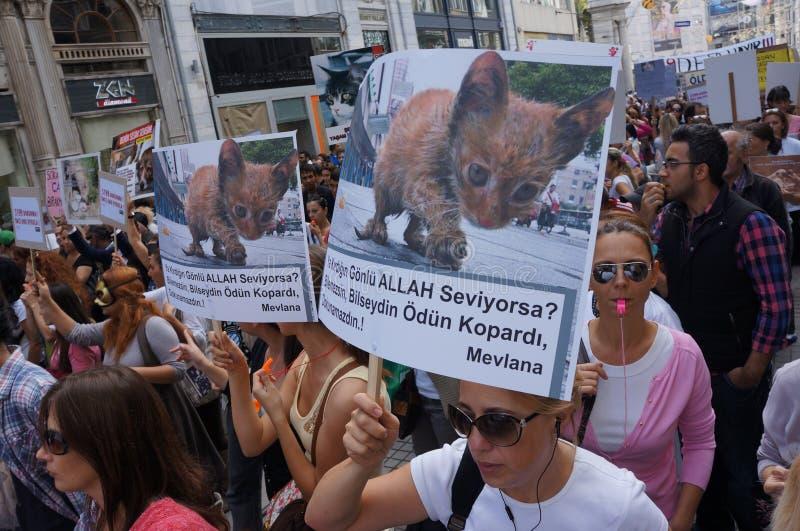 Download Djurens rättigheter redaktionell foto. Bild av skydd - 27283830