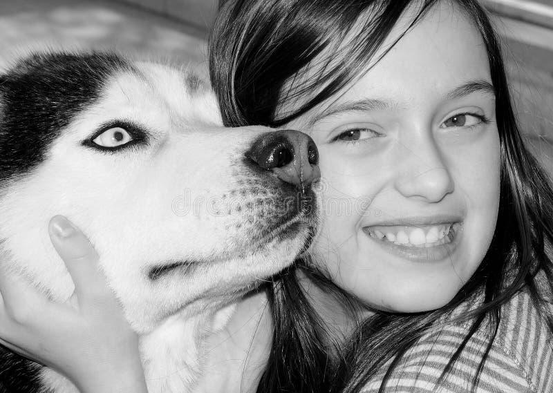 djurförälskelse fotografering för bildbyråer